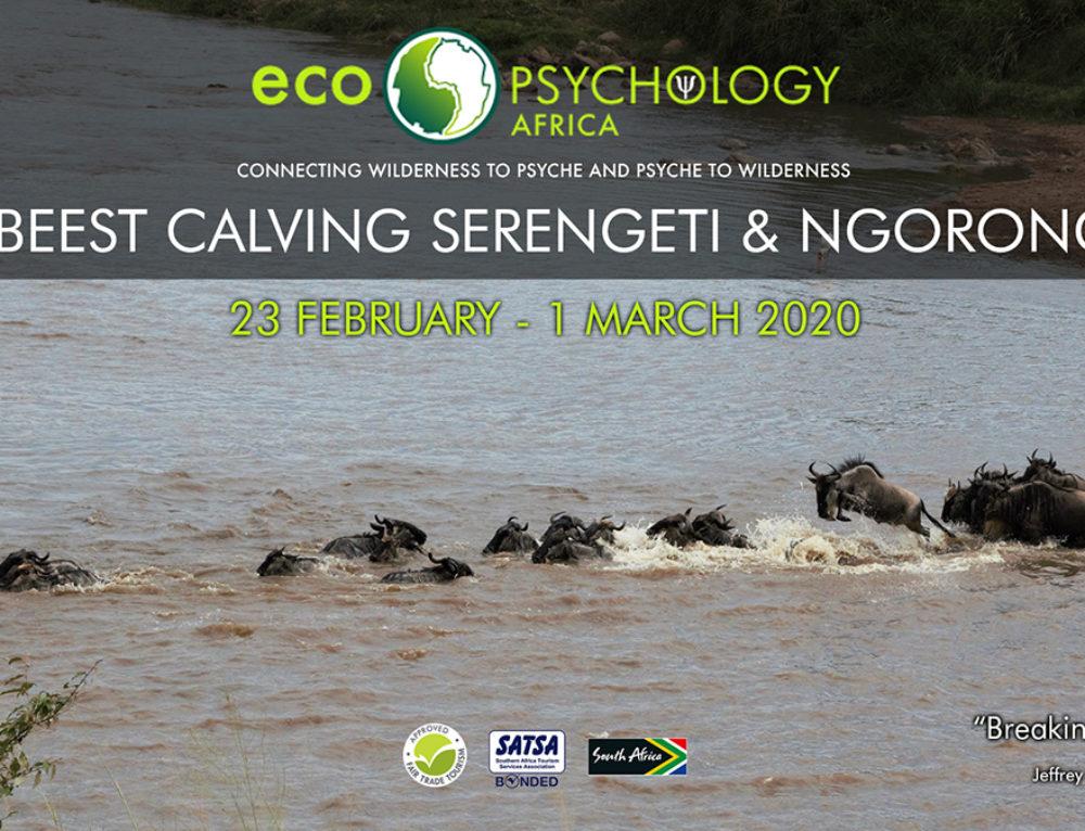 Wildebeest Calving Serengeti & Ngorongoro, 23 February – 1 March 2020